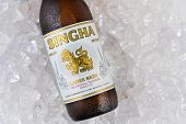 Singha Beer On Ice Closeup