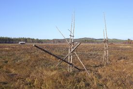 stock photo of marshlands  - View of a marshland in autumn - JPG