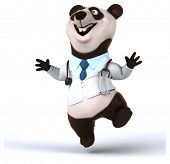 picture of panda  - Fun panda - JPG