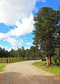 stock photo of dirt road  - The dirt road in the countryside - JPG