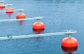 stock photo of fragmentation  - Red mooring buoys in a row floating on blue water small European yacht club marina port fragment - JPG