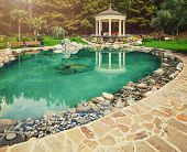 image of ponds  - Spring flowers in the Asian garden with a pond - JPG