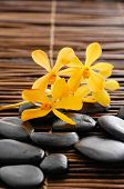 stock photo of yellow orchid  - Macro of yellow orchid and set of stones on mat - JPG