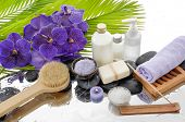 pic of salt-bowl  - spa setting with palm - JPG