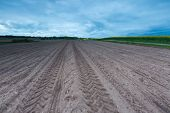 picture of plow  - Plowed field landscape in calm polish countryside - JPG