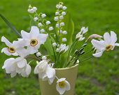 pic of windflowers  - Bouquet with various white wild flowers on the background of greenery - JPG