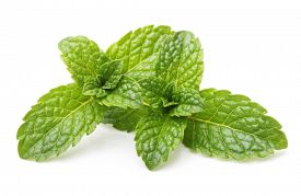 stock photo of mint-green  - Green mint leaves isolated on a white background - JPG