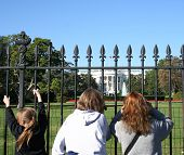 Tourists Looking At The White House