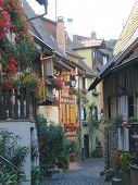 Peaceful French Alleyway