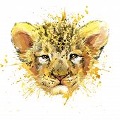 Постер, плакат: Lion cub T shirt graphics watercolor Lion cub illustration with splash watercolor textured backgrou