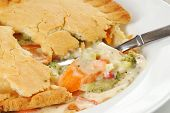 Chicken Pot Pie, Closeup