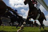 Horseracing 2