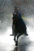 picture of running horse  - a cowboy runs his horse through a mountain stream - JPG