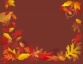Autumn Leaves On Brown Background