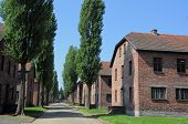 image of auschwitz  - brick barracks in concentration camp Auschwitz in Oswieim Poland - JPG