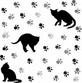 Background With Cats Silhouettes And Tracks