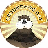foto of groundhog day  - Vector illustration of a cute groundhog popping out of a hole - JPG