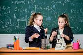 Girls Classmates Study Chemistry. Microscope And Test Tubes On Table. Perform Chemical Reactions. Ba poster