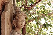 Idol's sacred Brahmin.