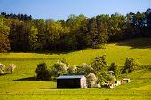 paisagem de Verão com madeira barrack
