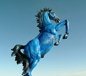 Blue Stallion Statue