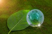World Globe Crystal Glass On Green Lush Leaf On Floor With Moss And Reflect Shine. World Environment poster