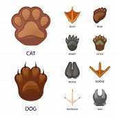 Vector Design Of Animal And Print Logo. Set Of Animal And Footprint Stock Symbol For Web. poster