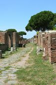 Ancient Roman Street Columns Ostia Antica