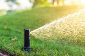Close-up Automatic Garden Watering System With Different Sprinklers Installed Under Turf. Landscape  poster