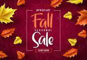 Fall Sale Seasonal Vector Banner. Fall Season Sale Text Typography With Colorful Maple Leaves In Red poster