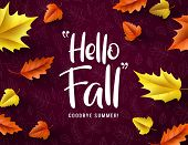 Hello Fall Vector Typography. Hello Fall Greeting Text With Colorful Maple And Oak Leaves Fallen In  poster