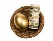 Golden Egg With Roll Of Money In Nest Isolated