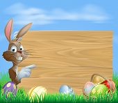 image of ester  - Easter bunny with Easter Eggs and blank wooden sign for your text - JPG