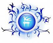 pommel icon on blue decorative button