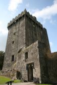 Looking For Blarney Stone