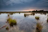 Rainy Sunset Over Swamps