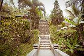 pic of gunung  - Gunung kawi temple in Bali island - JPG