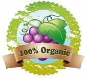 Illustration of an organic label with fresh grapes on a white background