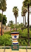 Urn Pot Garden Alcazar Royal Palace Seville Spain