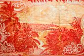 foto of indian currency  - indian 20 rupee currency note depicting sea shore surrounded with coconut palm trees - JPG