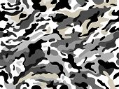 picture of camouflage  - Abstract background with seamless camouflage print - JPG