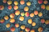 Many Apricot Fruits On The Concrete As Background.