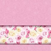 image of english rose  - Pink card with English roses - JPG