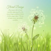 stock photo of dandelion seed  - Floral design poster of dandelion with pollens on green grass background vector illustration - JPG