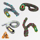 Colorful Illustration Set Of Viruses