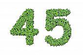 Duckweed Alphabet Letters - Number 4, 5 Isolated On White Background