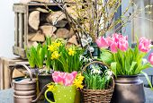 Easter Decoration With Spring Flowers