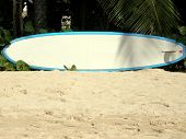 surf board on beach