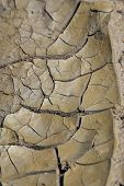 Dry Drought - African Textures - Cracks in the World