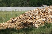 Scrap Heap Of Wooden Planks